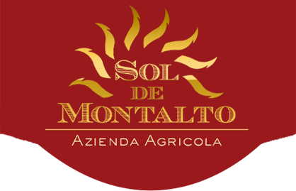 logo_solfoter-21