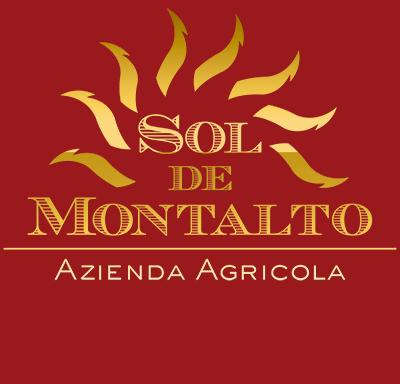 logo_solfoter